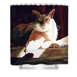In Her Glory II               Shower Curtain