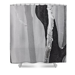 In Love Shower Curtain by Evgeni Dinev