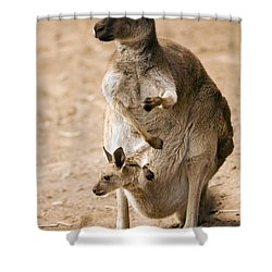 In  Mother's Care Shower Curtain by Mike  Dawson