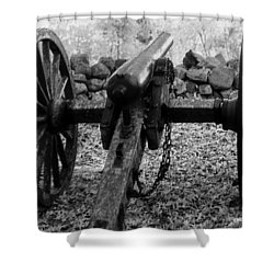 In Plain Sight Shower Curtain by Richard Rizzo