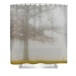 In Retrospect Shower Curtain by Skip Tribby