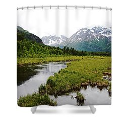 In Road To Denali Shower Curtain