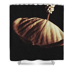 In Season Shower Curtain