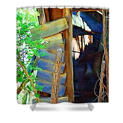 Shower Curtain featuring the photograph In Shambles by Donna Bentley