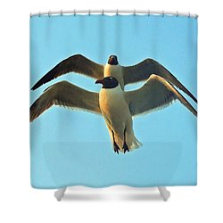 Shower Curtain featuring the photograph In Tandem At Sunset by Sandi OReilly