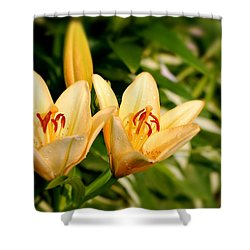 Shower Curtain featuring the photograph In The Beginning by Angie Tirado