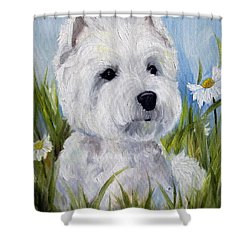In The Daisies Shower Curtain by Mary Sparrow