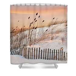 Shower Curtain featuring the photograph In The Dunes by Robin-Lee Vieira