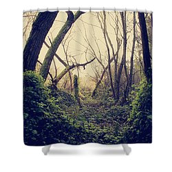 In The Forest Of Dreams Shower Curtain by Laurie Search
