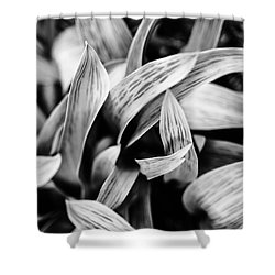 In The Garden _ Tulip Leaves Shower Curtain