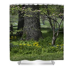 In The Garden Shower Curtain
