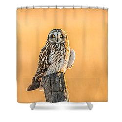In The Glow Shower Curtain by Yeates Photography
