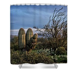 Shower Curtain featuring the photograph In The Green Desert  by Saija Lehtonen