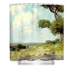 In The Hills Of Southwest Texas 1912 Shower Curtain