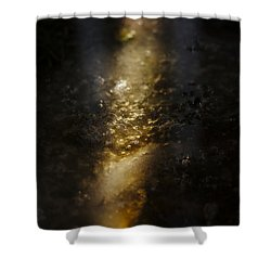 Shower Curtain featuring the photograph In The Light by Cendrine Marrouat