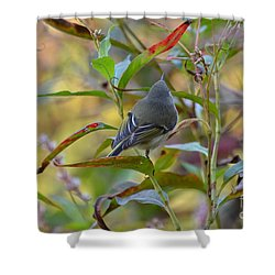 Shower Curtain featuring the photograph In The Light by Kathy Gibbons