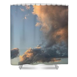 In The Light Shower Curtain