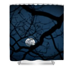 Shower Curtain featuring the photograph In The Light Of Night by Jessica Brawley