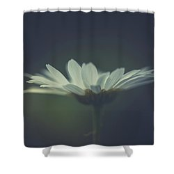 Shower Curtain featuring the photograph In The Light by Shane Holsclaw