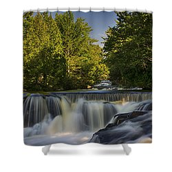 In The Middle Of The Middle Branch Shower Curtain by Dan Hefle