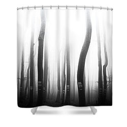 In The Misty Forest Shower Curtain