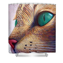 In The Moment Shower Curtain by Brian  Commerford