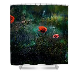 In The Morning Shower Curtain by Agnieszka Mlicka