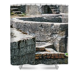 In The Ruins 6 Shower Curtain