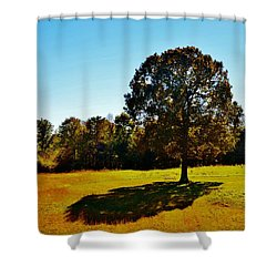 In The Shadow Of A Tree Shower Curtain