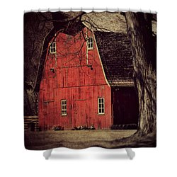In The Spotlight Shower Curtain by Julie Hamilton
