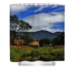 In The Valley Shower Curtain by Craig Wood