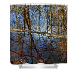 In The Wetland 3 Shower Curtain by Mary Bedy