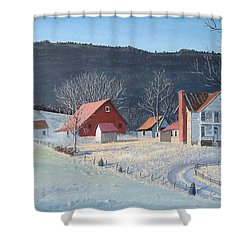 In The Winter Of My Life Shower Curtain