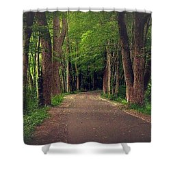 In To The   Deep Dark Woods  Shower Curtain by MaryLee Parker