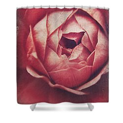 In Tough Times Shower Curtain by Laurie Search