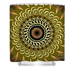 Incendia Kaleidoscope Shower Curtain by Deborah Benoit