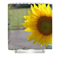 Incoming Bee Shower Curtain