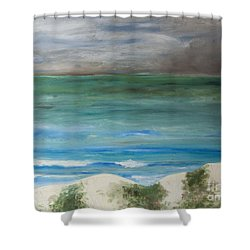 Incoming Weather Shower Curtain