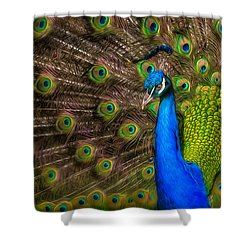 Shower Curtain featuring the photograph India Blue by Rikk Flohr