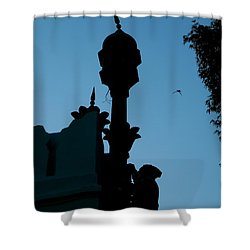 India Rooftop Palace Shower Curtain