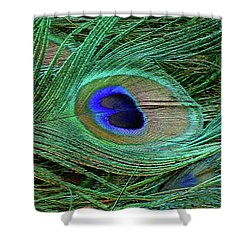 Indian Blue Peacock Macro Shower Curtain