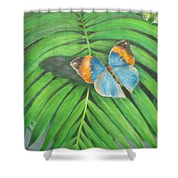 Indian Head Butterfly Shower Curtain