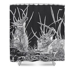 Shower Curtain featuring the mixed media Indian Ink Rabbits by Kevin F Heuman