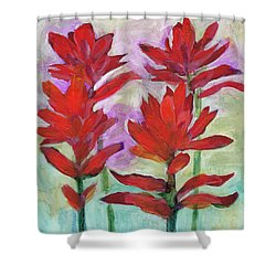 Indian Paintbrush Again Shower Curtain