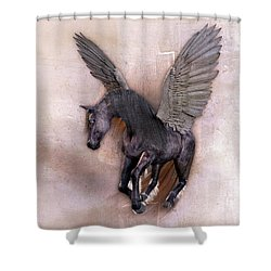 Indian Wind Song Shower Curtain