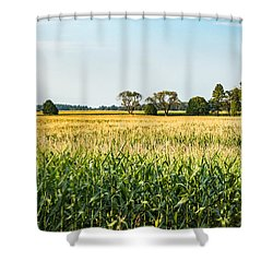 Indiana Corn Field Shower Curtain