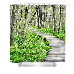 Indiana Dunes Great Green Marsh Boardwalk Shower Curtain