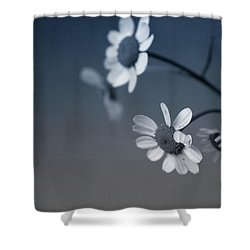 Indigo Daisies 2- Art By Linda Woods Shower Curtain