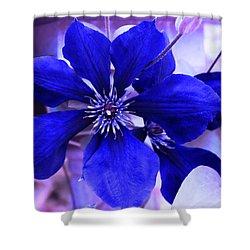 Shower Curtain featuring the photograph Indigo Flower by Milena Ilieva