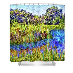 Indigo Lake Reflections Shower Curtain by Joel Bruce Wallach